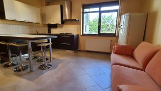 Apartment for rent in Cluj-Napoca, near the University of Medicine and Pharmacy, Zorilor neighborhood, living-room and bedroom Video